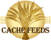 Cache Commodities Inc